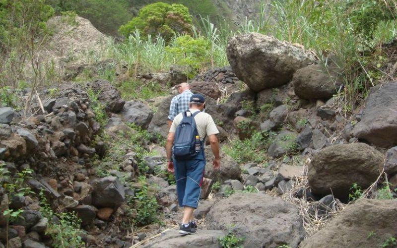 batch_SA trekking 01